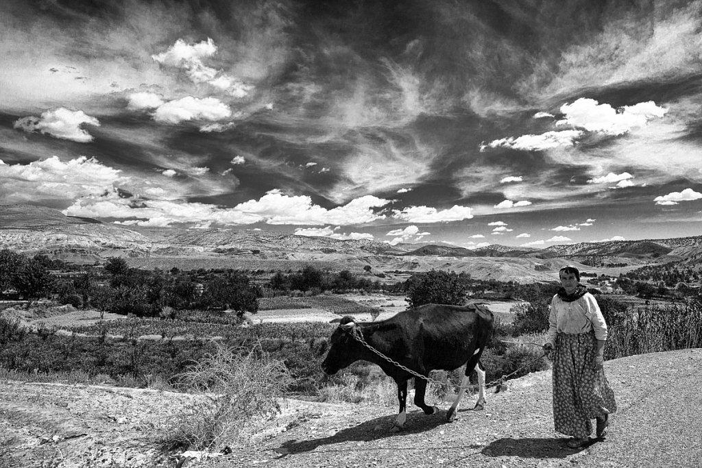 Voyage-2010915-Maroc-Route-AitBenHaddou-Tinfou-347-Modifier.jpg